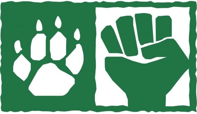 animal rights vs human rights
